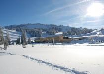 Großansicht Winterlandschaft im Bregenzer Wald