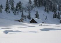 Großansicht Langlaufen in der Winterlandschaft