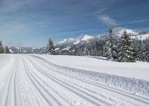 Großansicht Langlaufstrecke im Bregenzer Wald