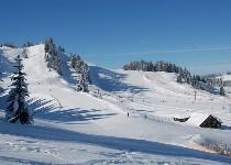Großansicht Winter im Bregenzer Wald