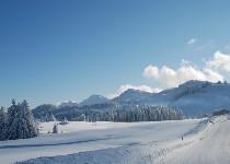 Großansicht Kalte Jahreszeit im Vorarlberg